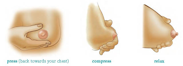 Hand-expressing-breast-milk